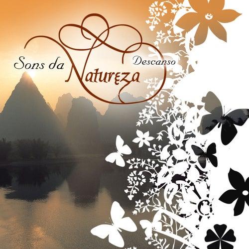Sons da Natureza - Descanso de Various Artists