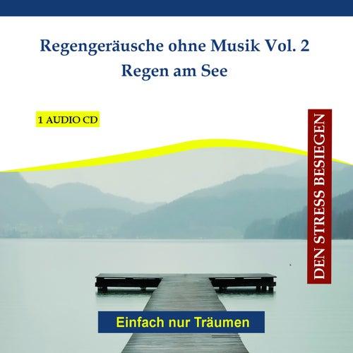 Regengeräusche ohne Musik Vol. 2 - Regen am See von Rettenmaier