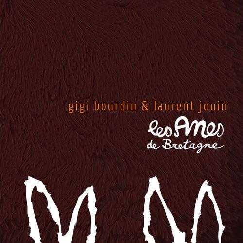 Les anes de bretagne by Laurent Jouin Gigi Bourdin