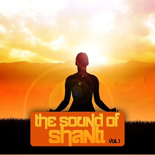The Sound of Shanti, Vol. 1 by Various Artists