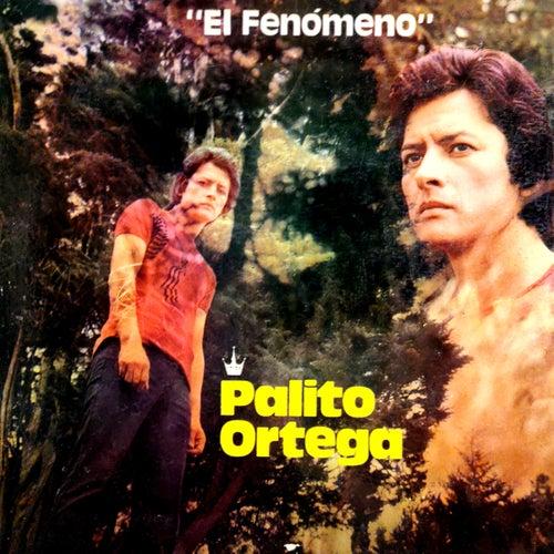 Palito Ortega Cronología - El Fenómeno (1971) de Palito Ortega