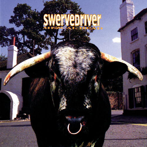 Mezcal Head by Swervedriver