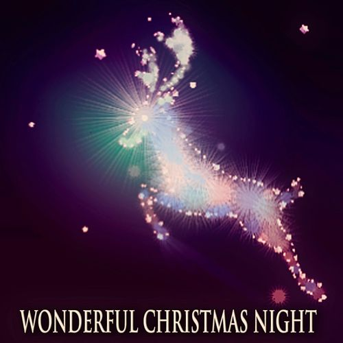 Wonderful Christmas Night (130 Most Beautiful Christmas Classics) de Various Artists