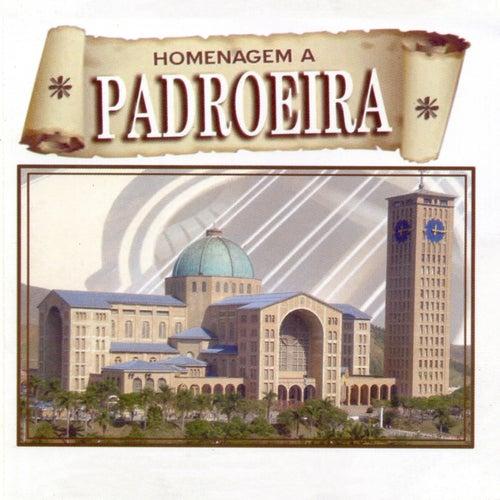 Homenagem a Padroeira von Various Artists