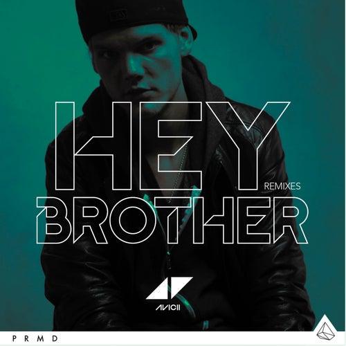 Hey Brother de Avicii
