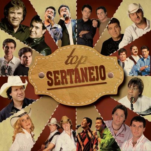 Top Sertanejo de Various Artists