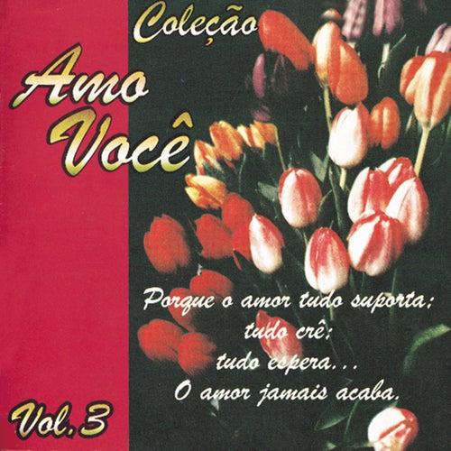 Amo Você Volume 3 by Various Artists