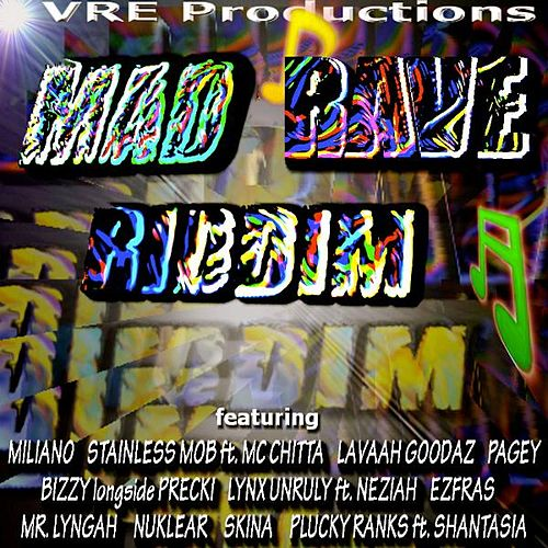 Mad Rave Riddim by Various Artists