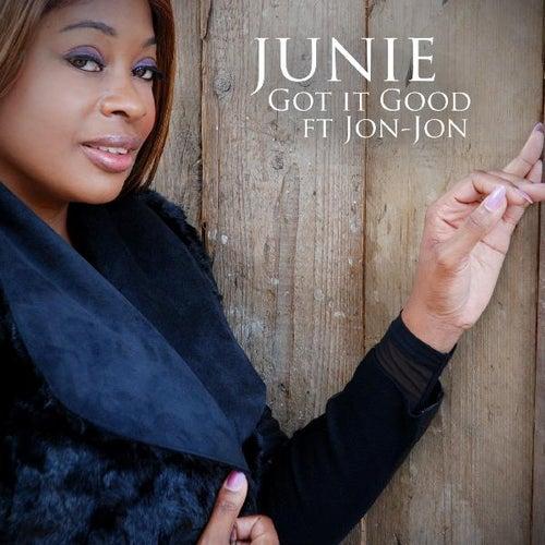 Got It Good (feat. Jon-Jon) by Junie Morrison