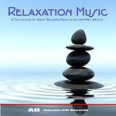 Relaxation Music by Various Artists
