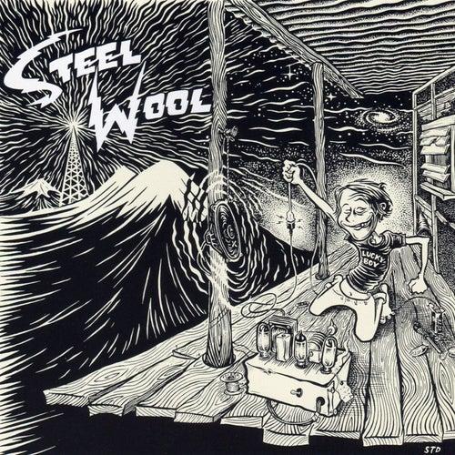 Lucky Boy by Steel Wool