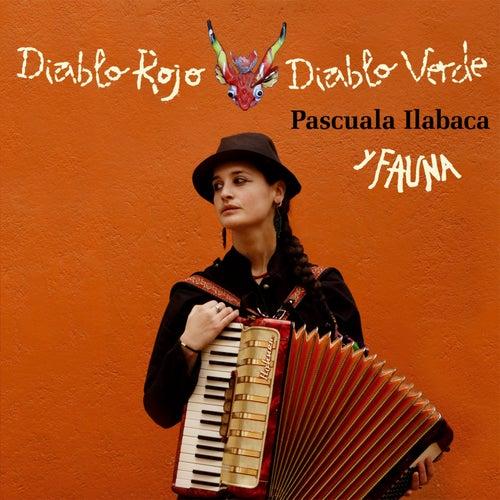 Diablo Rojo Diablo Verde de Pascuala Ilabaca