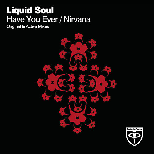 Have You Ever / Nirvana by Liquid Soul