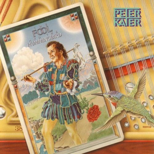 The Fool And The Hummingbird de Peter Kater