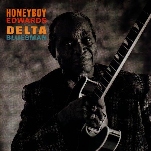 Delta Bluesman de David
