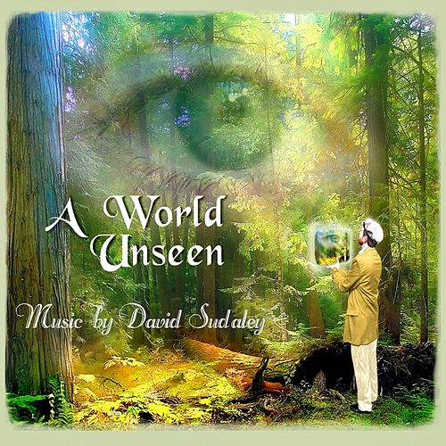 A World Unseen by David Sudaley