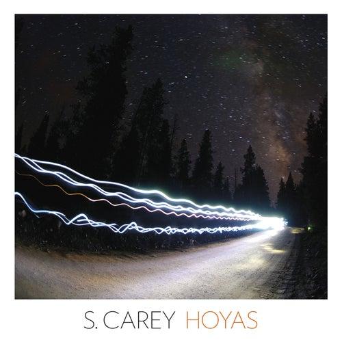 Hoyas by S. Carey