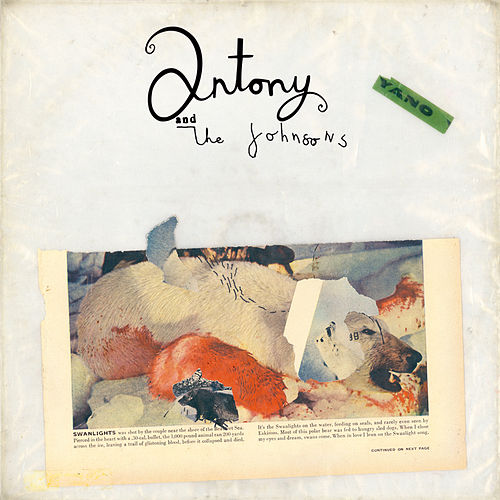 Swanlights de Antony and the Johnsons