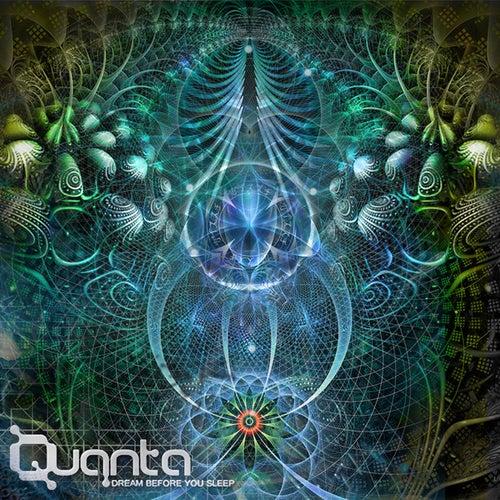 Dream Before You Sleep de Quanta