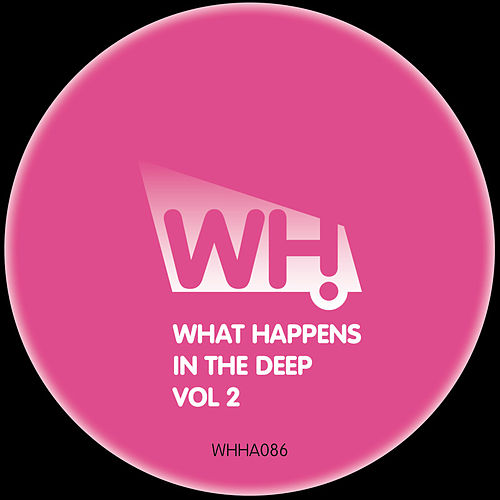 What Happens in the Deep Vol 2 de Various Artists