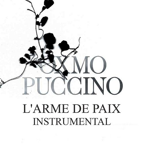 L'arme de paix (Instrumental version) by Oxmo Puccino