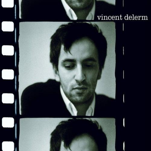 Vincent Delerm de Vincent Delerm