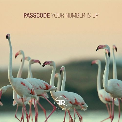 Your Number Is Up - Single by Passcode