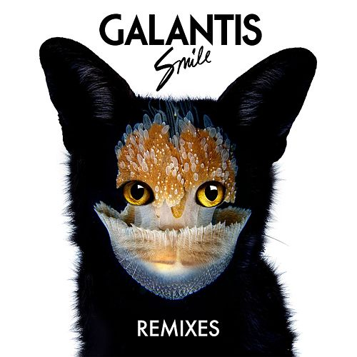Smile von Galantis