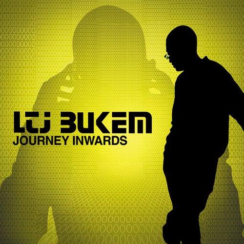 Journey Inwards by LTJ Bukem