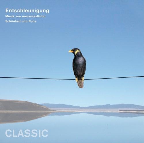 Entschleunigung - Musik von unermesslicher Schönheit und Ruhe (Classic) von Various Artists