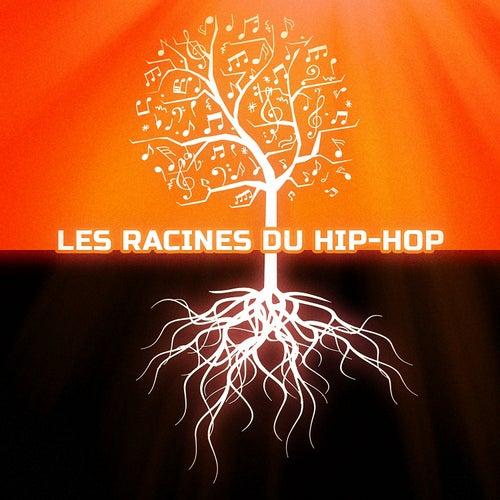Les racines du Hip-Hop de Various Artists