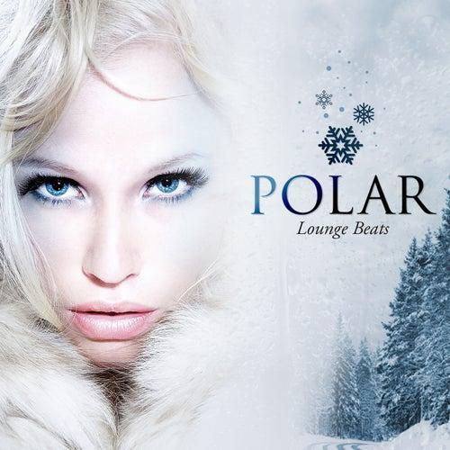 Polar Lounge Beats by Various Artists