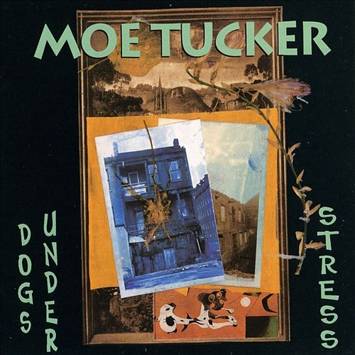Dogs Under Stress by Moe Tucker