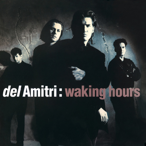 Waking Hours (Re-Presents) de Del Amitri