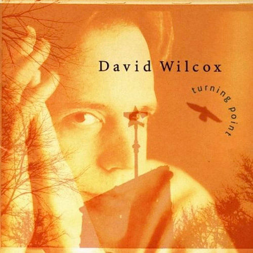 Turning Point de David Wilcox