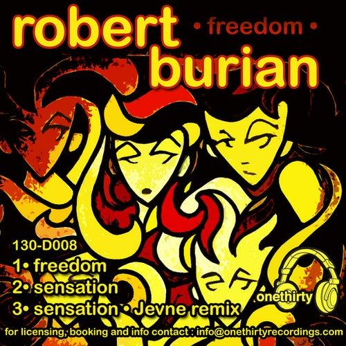Freedom de Robert Burian