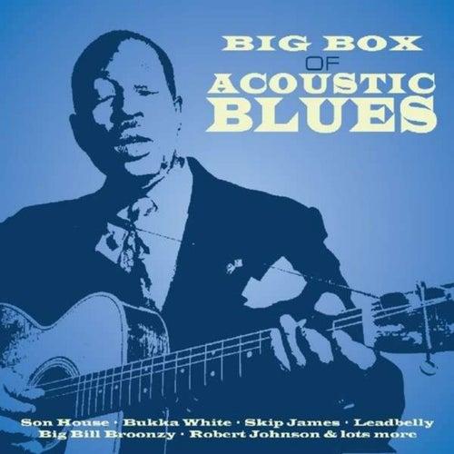 Big Box of Acoustic Blues Vol. 3 de Various Artists