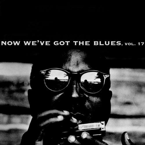 Now We've Got the Blues, Vol. 17 de Various Artists