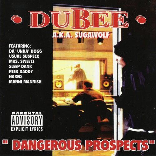 Dangerous Prospects von Dubee