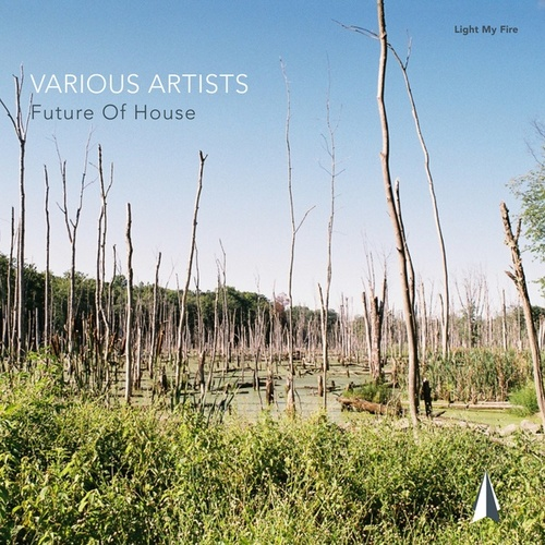 Future of House de Various Artists