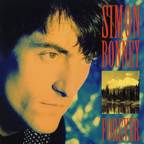 Forever by Simon Bonney