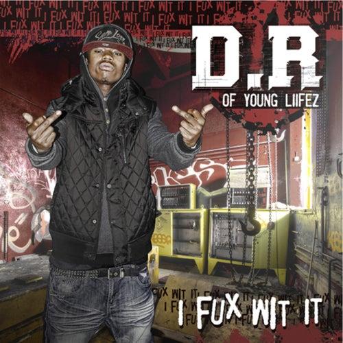 I Fux Wit It by D.R.