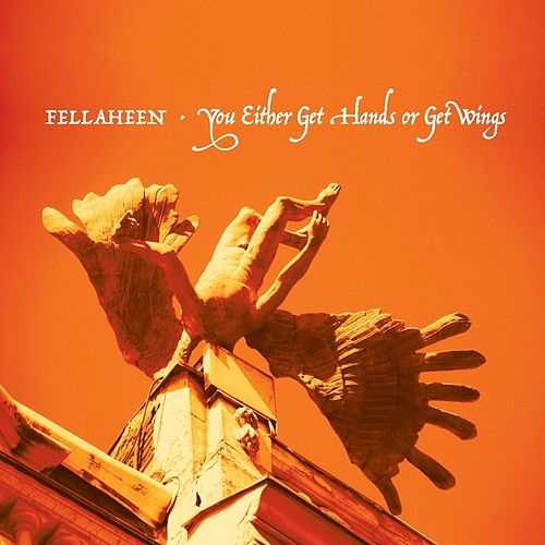 You Either Get Hands or Get Wings by Fellaheen