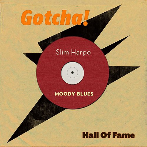 Moody Blues (Hall of Fame) de Slim Harpo