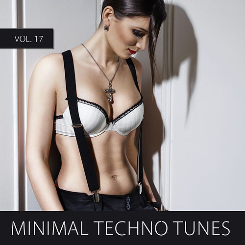 Minimal Techno Tunes, Vol. 17 by Various Artists