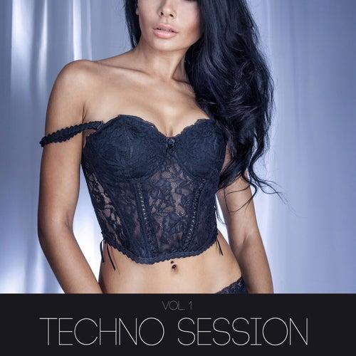 Techno Session, Vol. 1 von Various Artists