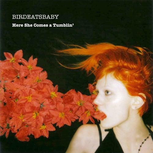 Here She Comes-a-Tumblin' de Birdeatsbaby