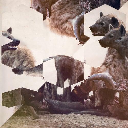 The Wish de Hyenah