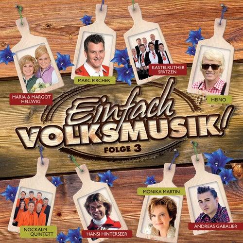 Einfach Volksmusik! Folge 3 von Various Artists