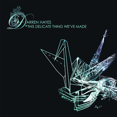 This Delicate Thing We've Made de Darren Hayes